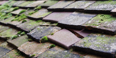 Upton Upon Severn roof repair costs